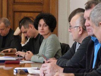 Николаев, городской совет, ремонт