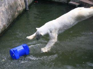 Николаев, зоопарк