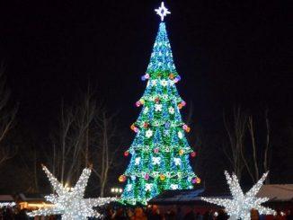 Николаев, площадь, елка, Соборная