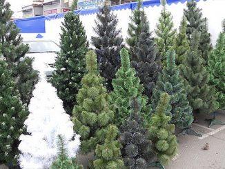 Николаев, исполком, горсовет, Новый год, елки