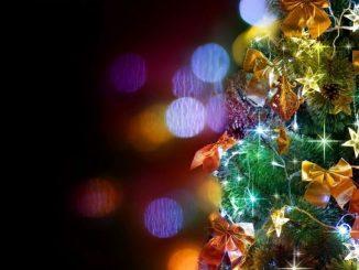 Украина, Новый год, праздники, елки