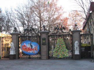 Николаев, Зоопарк, Топчий, деревья, ели, сосны