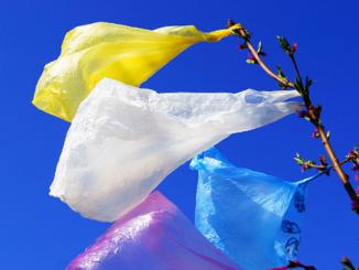 Полигон твердых бытовых отходов, полигон ТБО, мусор, пакеты