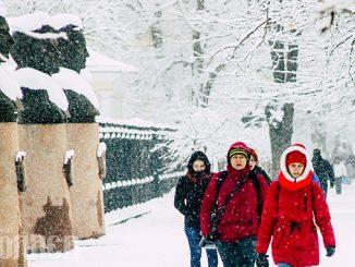 Зима, снег, снегопад, погода в Николаеве, снег в Николаеве