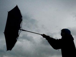 Украина, Николаев, Николаевщина, циклон, ветер, снег, дождь, погода, климат