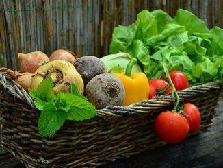 посевной календарь на май, Луна, советы, полезно знать, огород, сад, растения, овощи, фрукты,