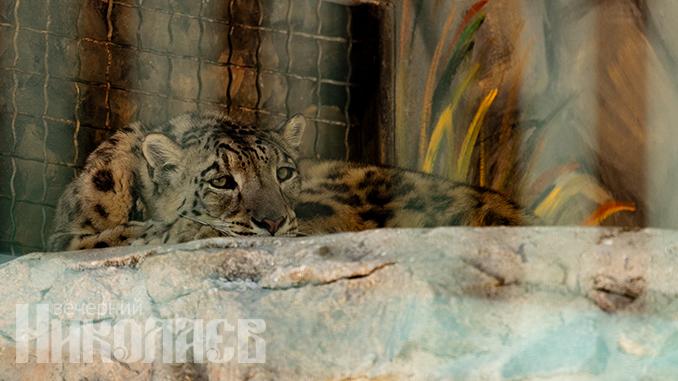 Николаевский зоопарк, животные, природа