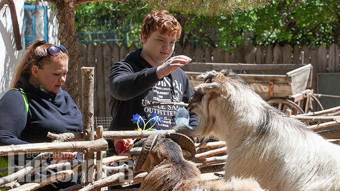Николаевский зоопарк, карантин