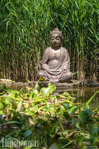 Лето, природа, весна, Будда, буддизм