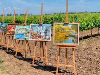Коблево, виноградники, выставка картин, виноделие в Николаеве, отдых в Николаеве