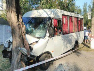 маршрутка врезалась в дерево, Николаев, происшествия, полиция, ДТП, дерево, тормоза, новости, происшествия