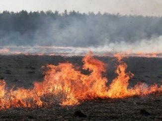 Синоптики предупредили, Украина, новости, прогноз, стихия, пожар, опасность, ГСЧС, Гидрометцентр