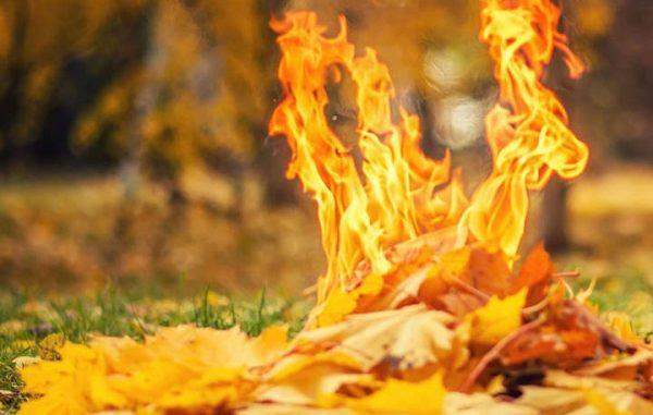 Николаев, новости, ГСЧС, 101, Служба спасения, Чрезвычайная пожарная опасность, пожары,