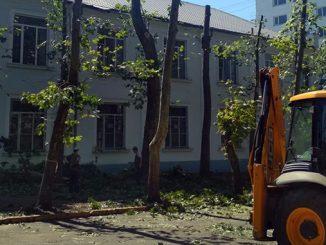 Кронирование деревьев, платаны, завод Экватор, Николаев, новости Николаева