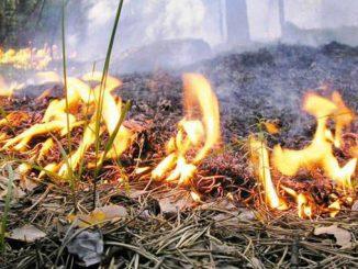 Спасатели предупредили, новости, ГСЧС, пожар, опасность, Украина, спасатели