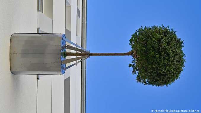 Альтернативное озеленение ,Эберсвальд ,новости, озеленение, Германия, ноу-хау, новинка, Штутгарт, стартап, деревья, сады,
