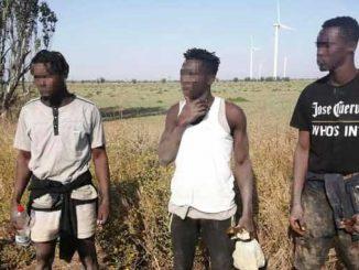 Трое нелегалов из Гвинеи, новости, происшествия, Очаков, ГПСУ, Госпогранслужба, пограничники, новости