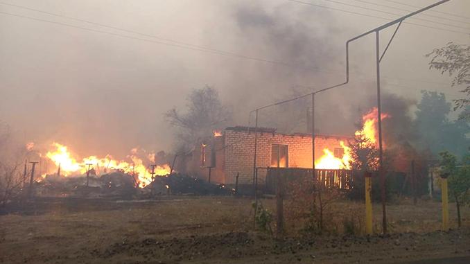 Луганская область, Северодонецк, лесные пожары