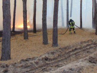 поджоги в Луганской области, новости, пожары, ЛНР, боевики, Луганская область, Украина, ГСЧС, МВД, Шевченко