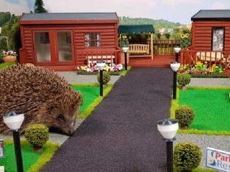 Парк отдыха для ежей, Великобритания, Hedgehog Holiday Park