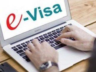 процедура выдачи электронных виз, новости, Украина, МИД, визы,