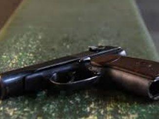 пистолет ,Николаев, новости, криминал, оружие, пропажа, полиция, Николаев