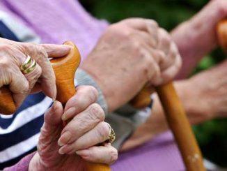 частные пансионаты Лазебная, новости, дома престарелых, частные, пансионаты, пожилые люди, старики, социальные услуги, социальная политика, министр, Лазебная, новости, Украина
