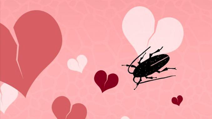 День святого Валентина, День влюбленных, Николаевский зоопарк, тараканы