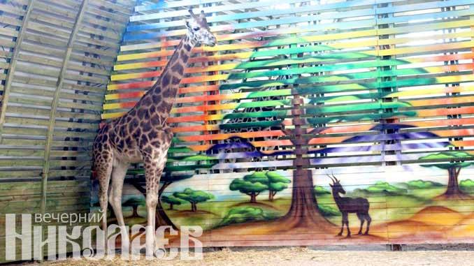Посмотреть на жирафов, Николаев, зоопарк, Нуру, Логан, YouTube, Mykolaiv Secure, новости