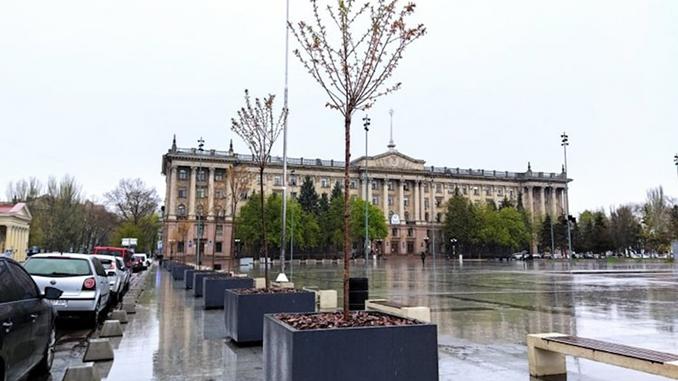 Деревья в кадках на Соборной площади