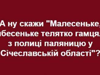 Порядок проведения экзаменов на уровень владения государственным языком, Кабмин, мова, новости, экзамен, гражданство, Украина,