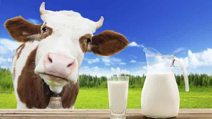 Аргентина, Украина, новости, экспорт, торговля, экономика, аккредитация, молоко, молочные продукты,