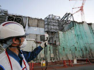 Фукусима-1, Япония