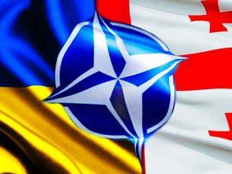 Украина и Грузия, Украина, Грузия, ЕС, НАТО, ПДЧ, МИД, Кулеба, Залкалиани, новости, координация