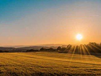 большинство жителей Украины не поддерживают продажу земли, рынок земли, Украина, новости, статистика, продажа земли, украинцы, земля,