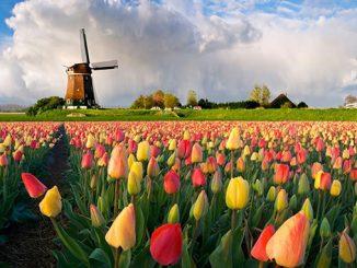 Нидерланды, Голландия, Амстердам