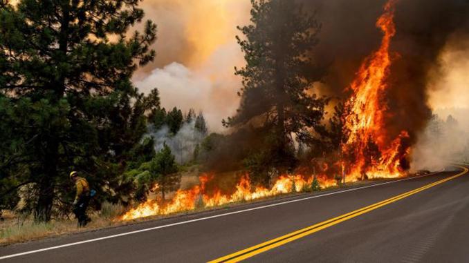 Лесные пожары, Калифорния