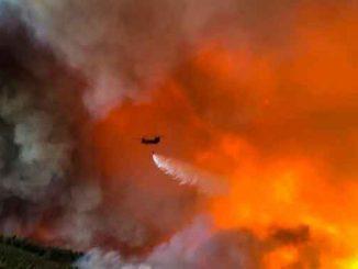 Пожары в Греции, пожар, огонь, Греция, новости, пламя, стихия,