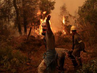 В Греции ,пожары, огонь, стихия, правительство, греки, Кириакос Мицотакис,