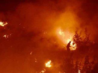 Северная Македония, новости, пожары, кризис, кризисная ситуация, огонь, лесные пожары, стихия,