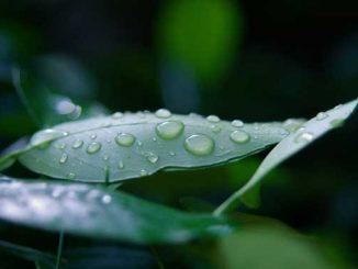 погода, прогноз погоды, метеопрогноз, Николаев