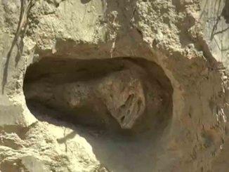 останки мамонта, Коростень, Флагшток, флаг, археология, новости, Украина, раскопки, котлован, рабочие