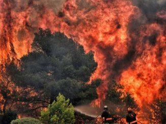 МИД, новости, Украина, Греция, Северная Македония, пожары,