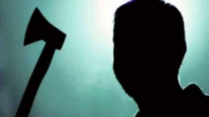 Сынок с топором, дело из архива, полиция, милиция, уголовный розыск, Владимир Зацеркляный, убийство, Николаев