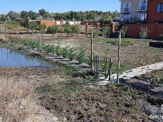 В Корабельном районе Николаева прорвал канализационный коллектор