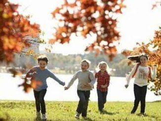 начало осенних каникул, новости, Николаев, дети, учеба, каникулы, осень, отдых, управление образования,
